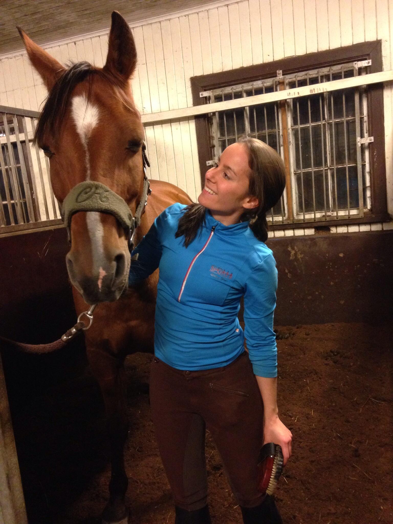 vad kostar det att äga en häst
